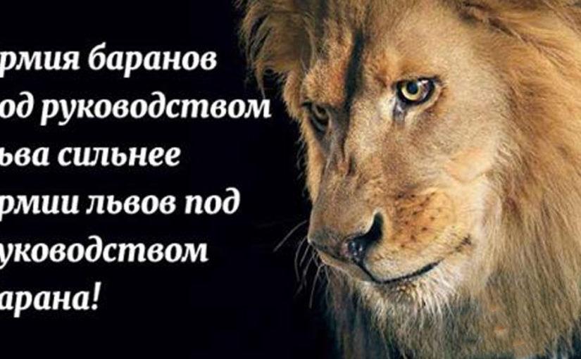 12 мудрых пословиц народов мира