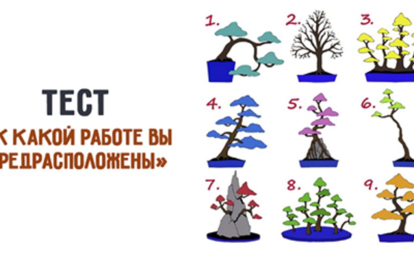 Британский тест «К какой работе вы предрасположены». Выберите дерево и узнайте!